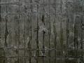 Vera-Boele-Keimer_Black-grid-detail